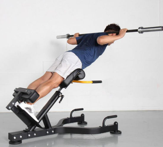 ABS Chair Exercise